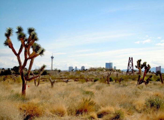 Vegas-Skyline-JWB15