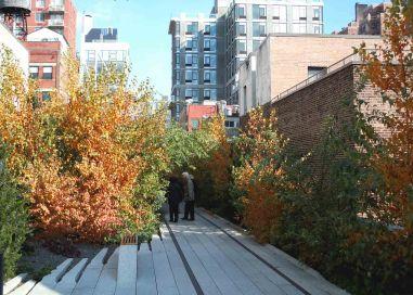 Highline-7